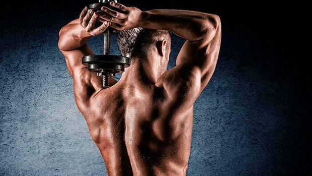 10 exercices spéciaux pour développer vos triceps !